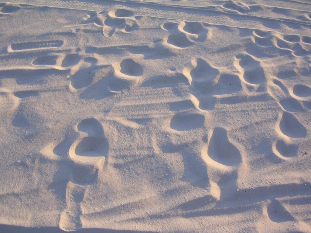 人の歩いた足跡がついた白砂