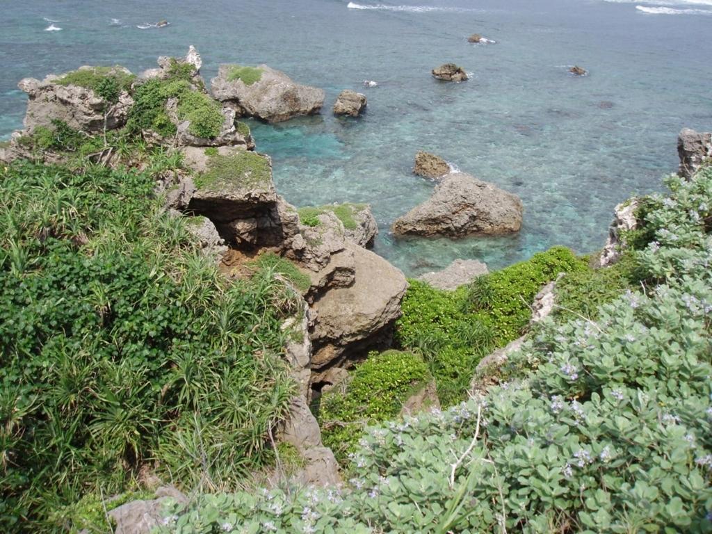 ダイナミックな景色の岩場