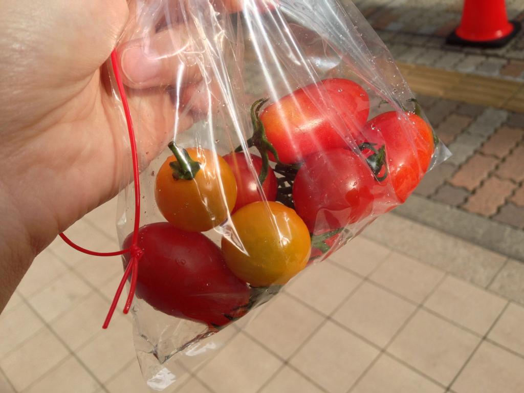 ミニトマトすくい