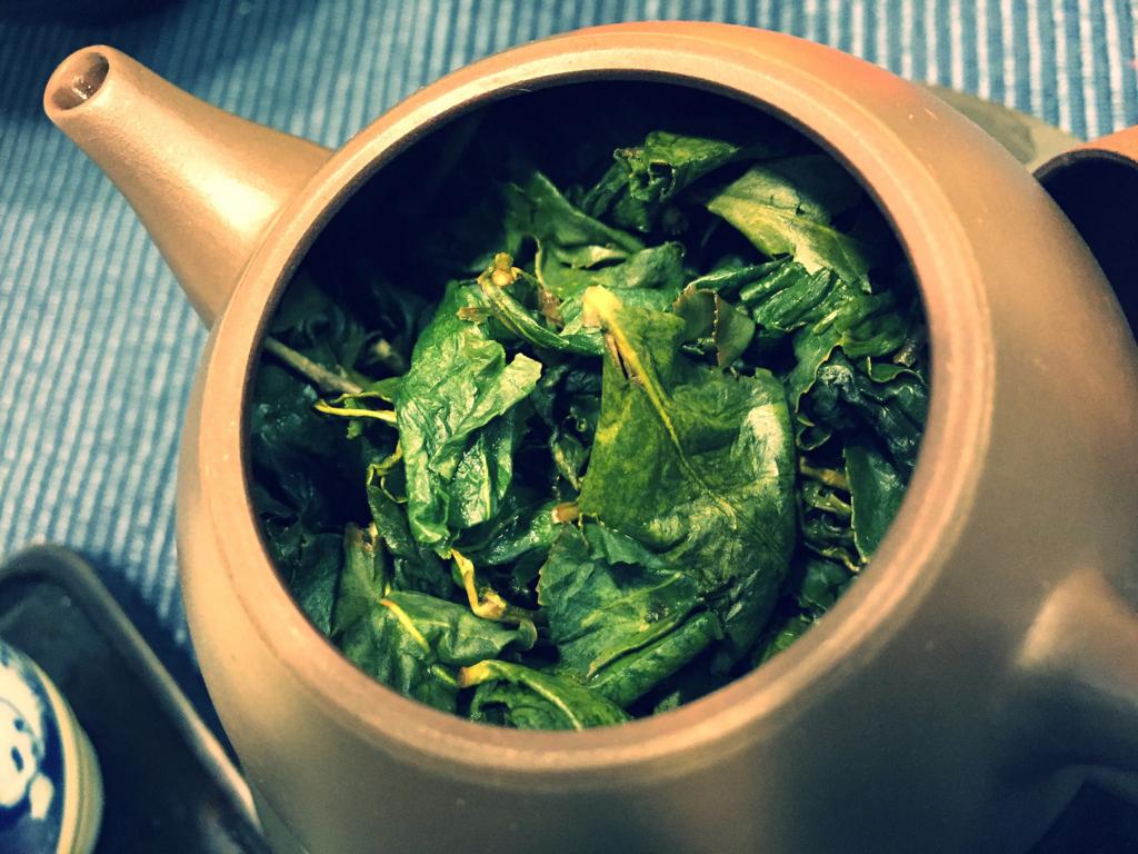 茶壷の中で開いた杉林渓烏龍茶の茶葉