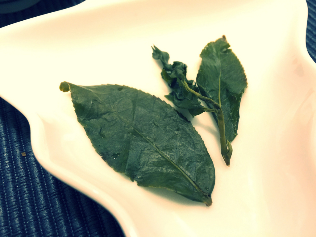 杉林渓の葉っぱ