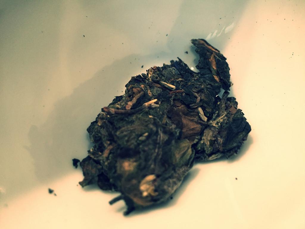 樹齢200年の老木白茶