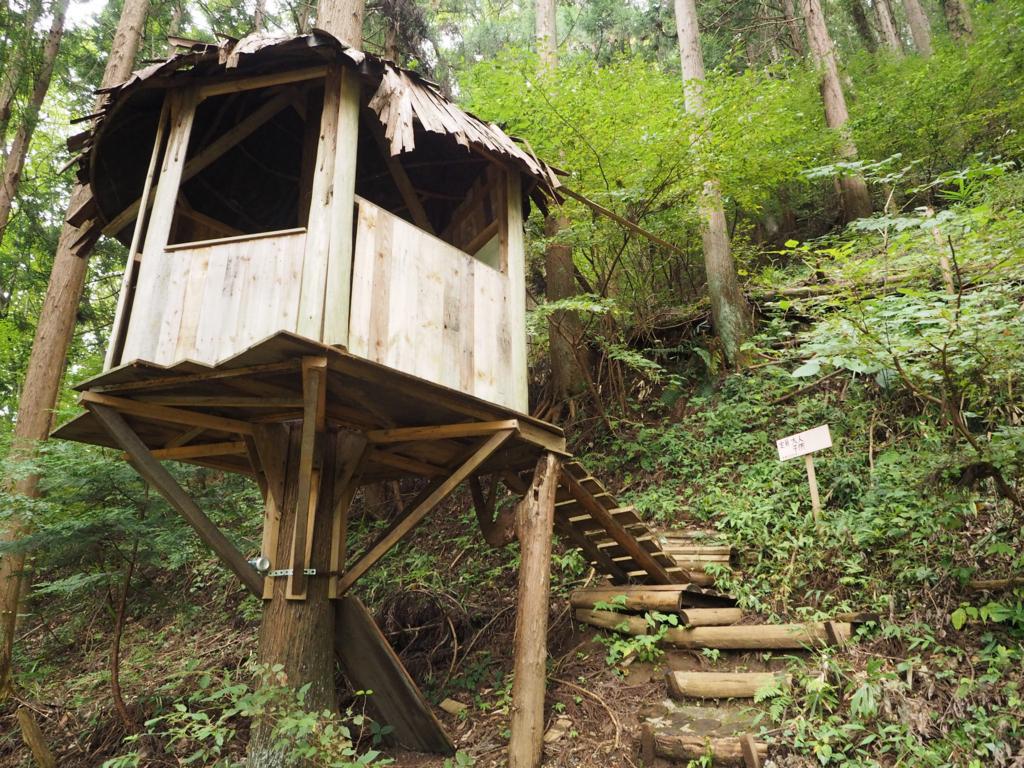 小さいほうのツリーハウス