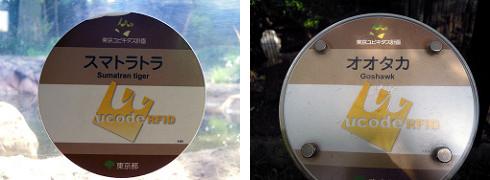 スマトラトラのucode RFID、オオタカのucode RFID
