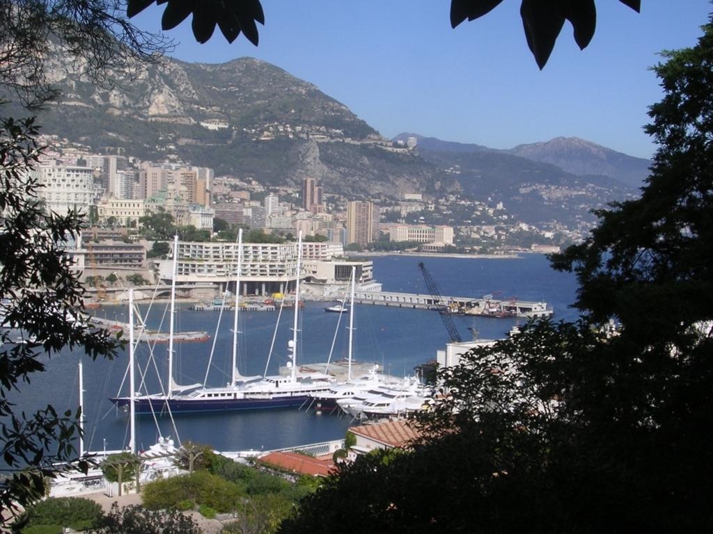街から見下ろす港