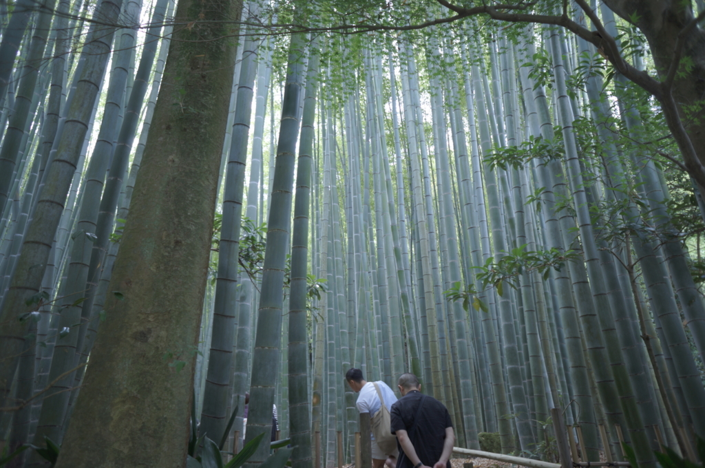 f:id:hitoyasu:20170715003927j:plain