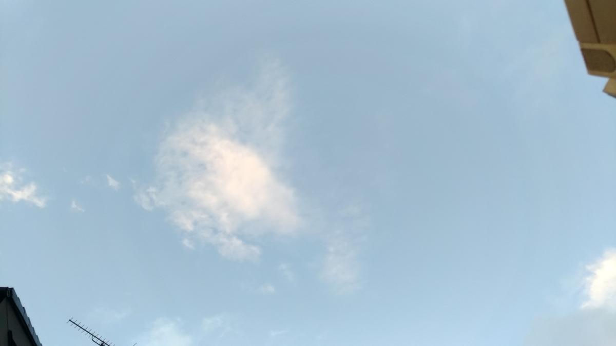 f:id:hitsujidash:20200713092518j:plain