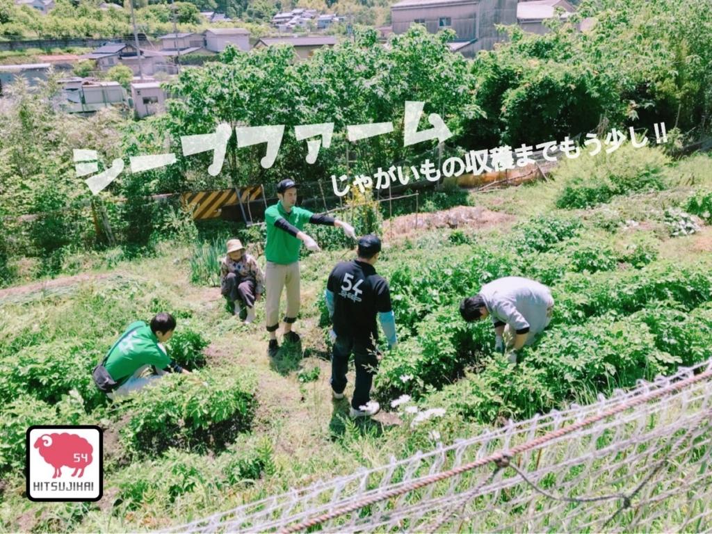 f:id:hitsujikai2010:20180523101001j:plain