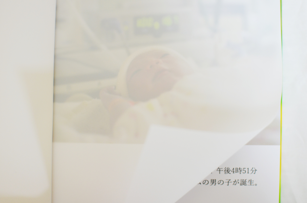 f:id:hitsujinoikuji:20170528170328j:plain