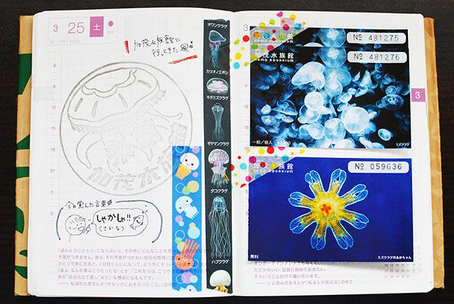 f:id:hitsujinoikuji:20170624225444j:plain