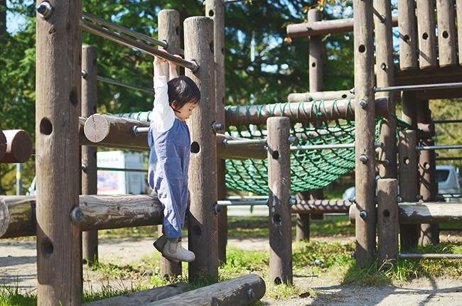 f:id:hitsujinoikuji:20171106203719j:plain