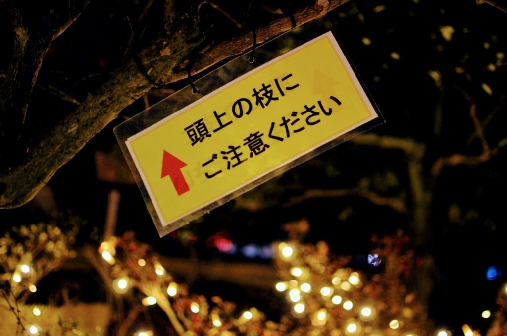 f:id:hitsujinoikuji:20180110160421j:plain