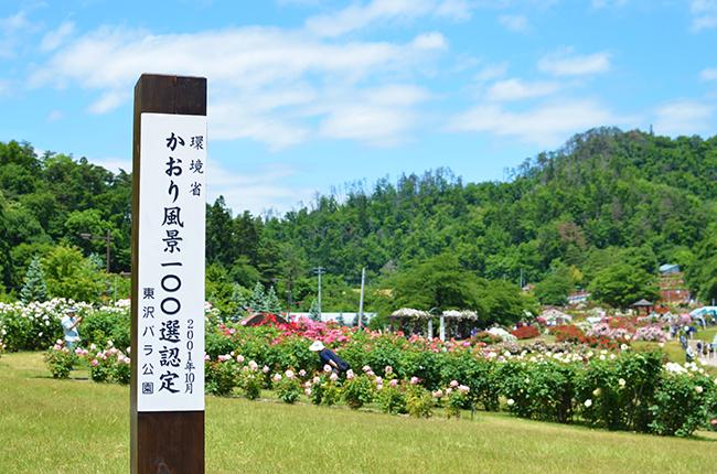 f:id:hitsujinoikuji:20180618011044j:plain
