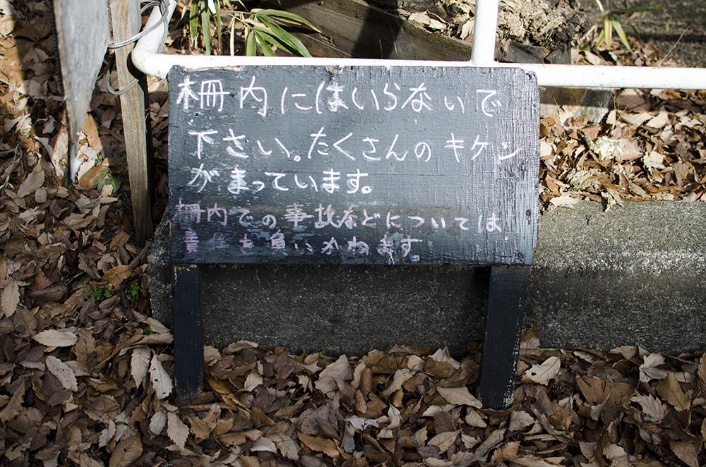 f:id:hitsujinoikuji:20190129011553j:plain