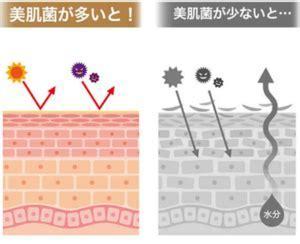 f:id:hitujinokokun:20210210205505p:plain