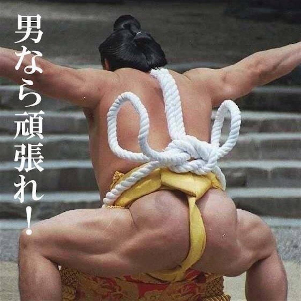 f:id:hiyama242014:20170202214052j:image