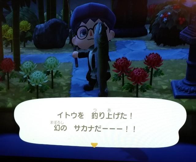 f:id:hiyamasa:20201204075809j:plain