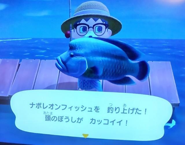 f:id:hiyamasa:20210705101754j:plain