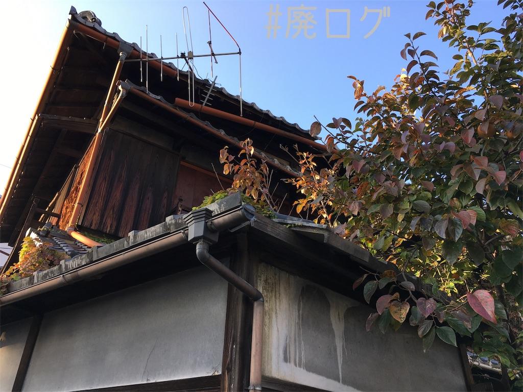 f:id:hiyapa:20171119230603j:image