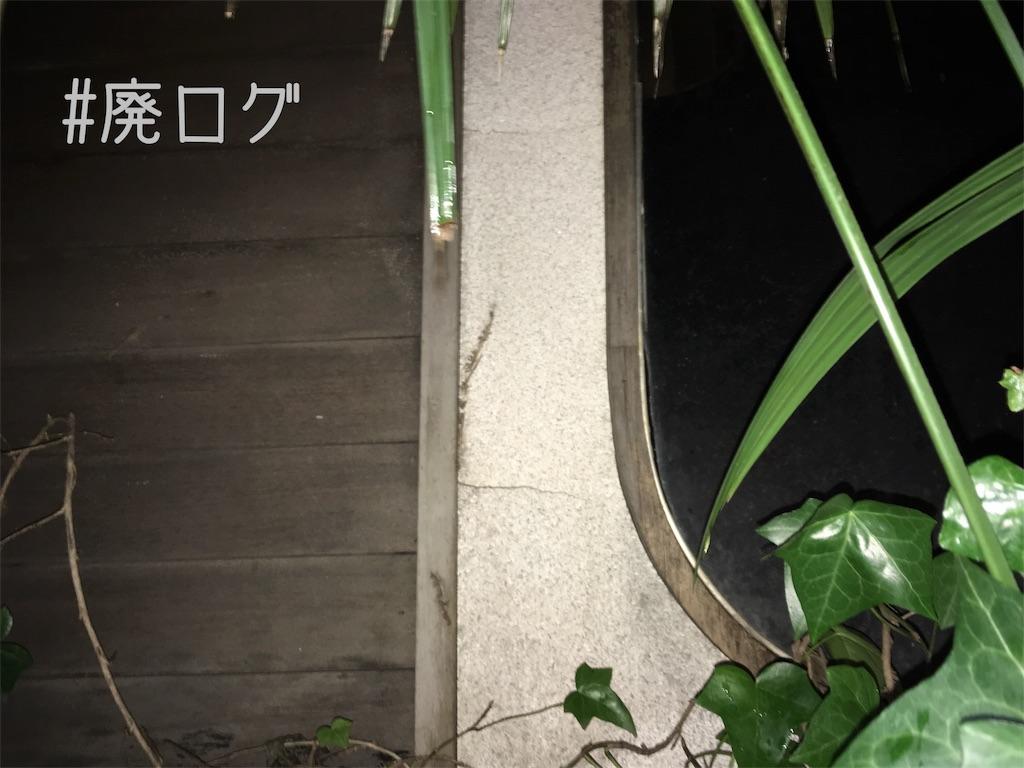 f:id:hiyapa:20180207215941j:image