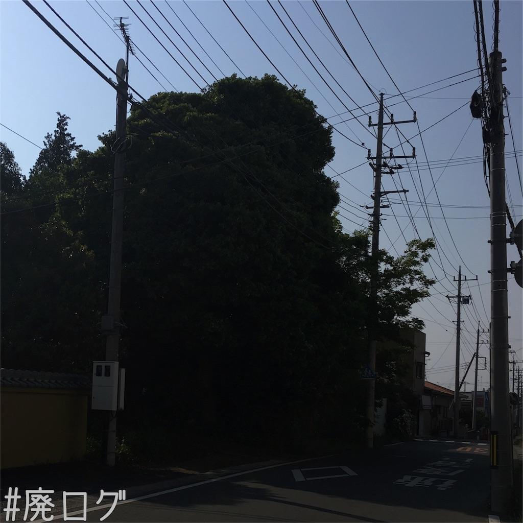 f:id:hiyapa:20180503205320j:image