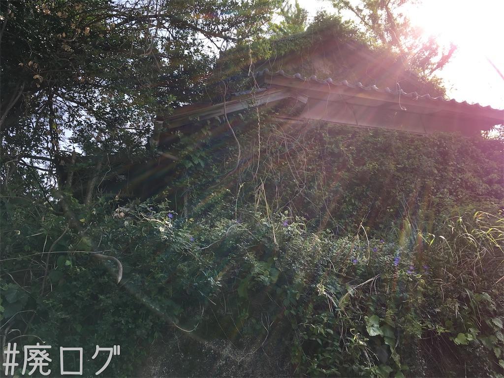 f:id:hiyapa:20180527120653j:image