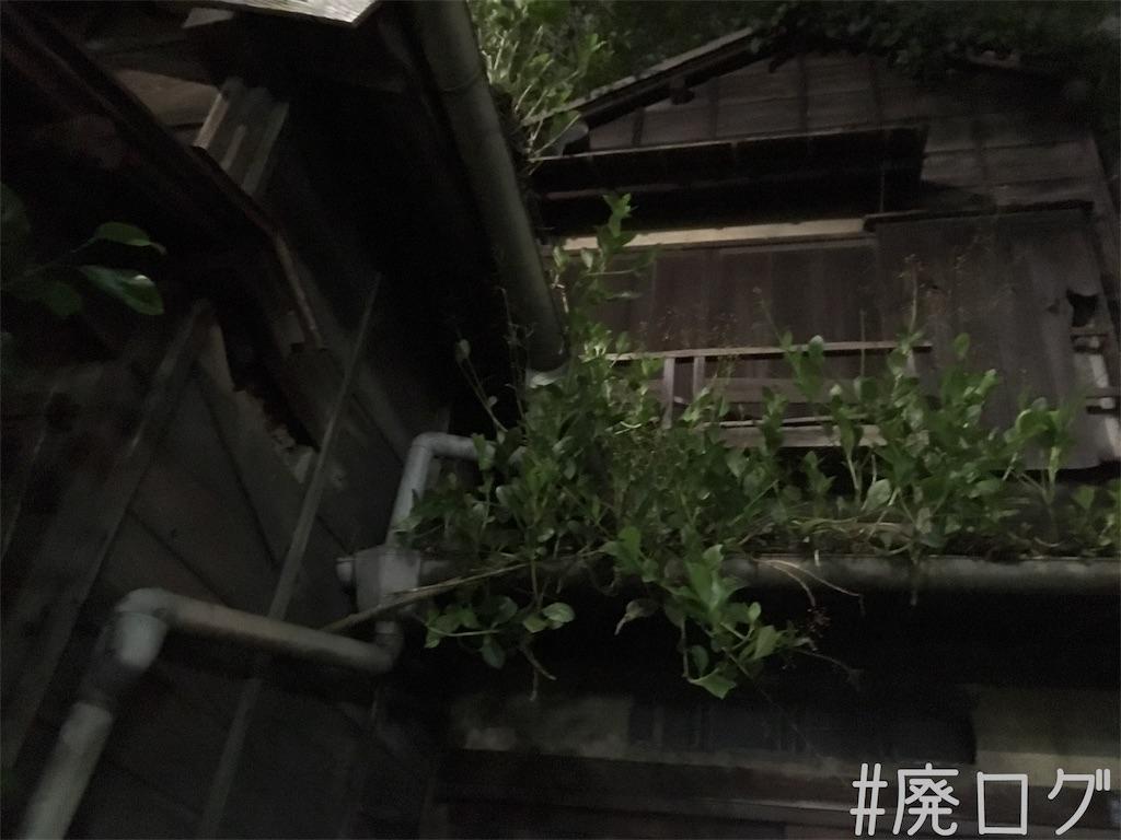 f:id:hiyapa:20181025220230j:image