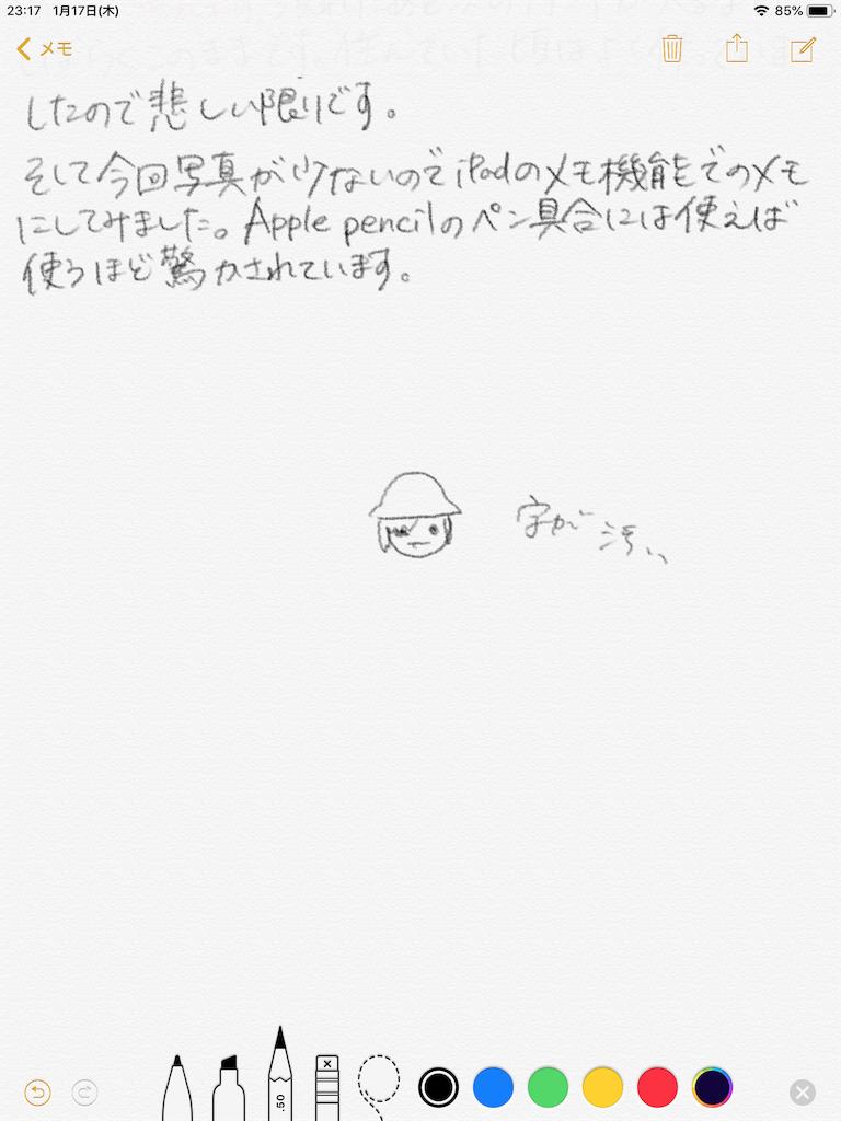 f:id:hiyapa:20190117232311p:image