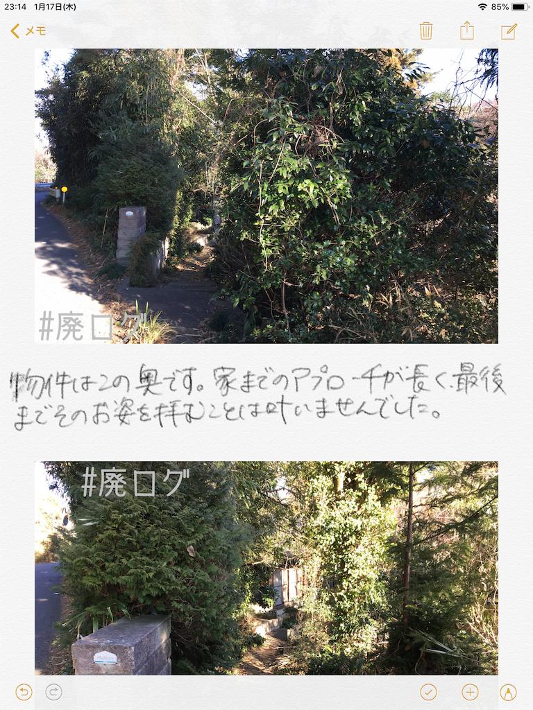 f:id:hiyapa:20190117232404p:image