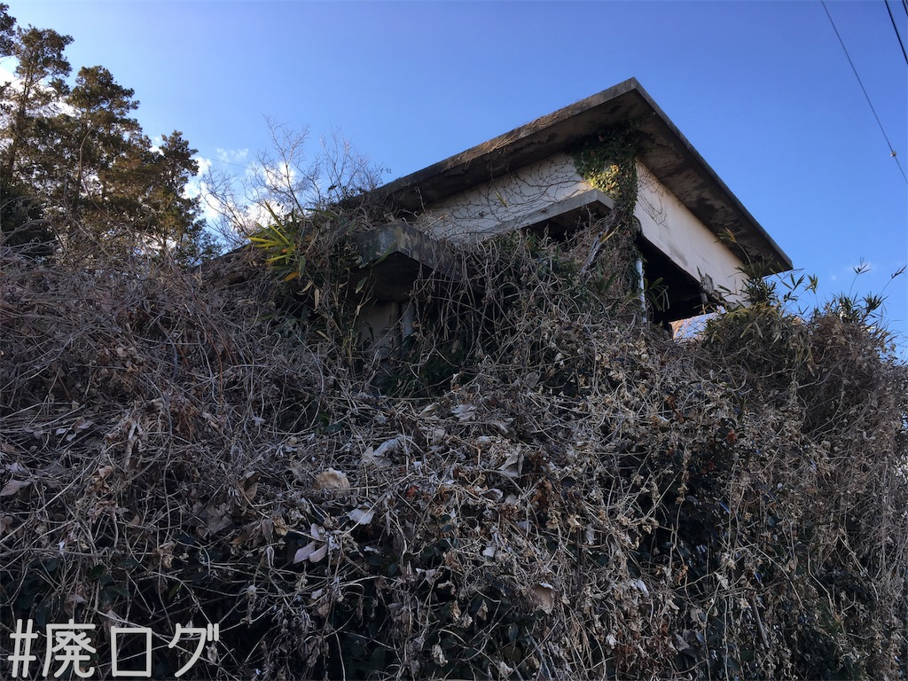 f:id:hiyapa:20190120195809j:image