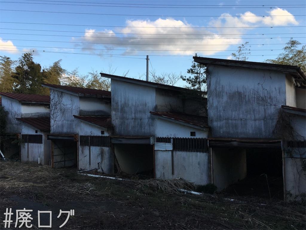 f:id:hiyapa:20190130220520j:image