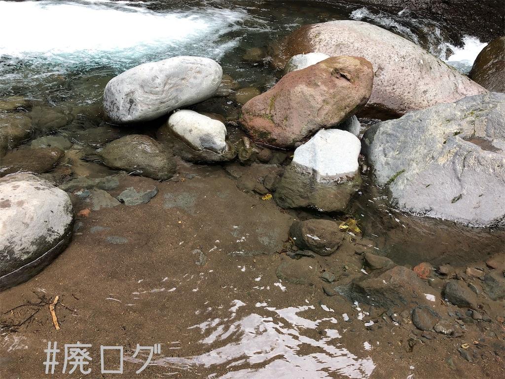 f:id:hiyapa:20190927215001j:image