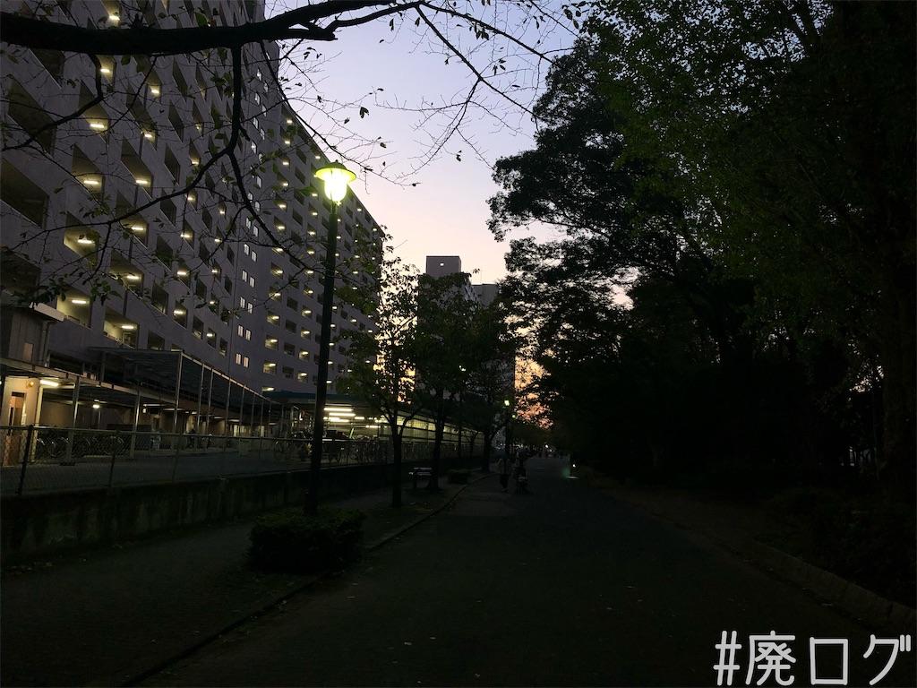 f:id:hiyapa:20191205230712j:image