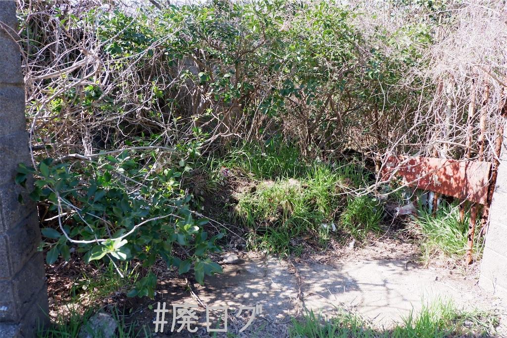 f:id:hiyapa:20200401200431j:image