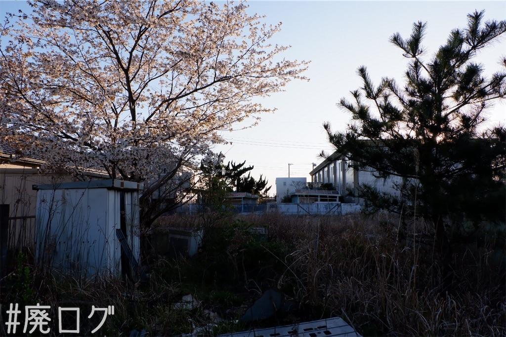 f:id:hiyapa:20200412183204j:image