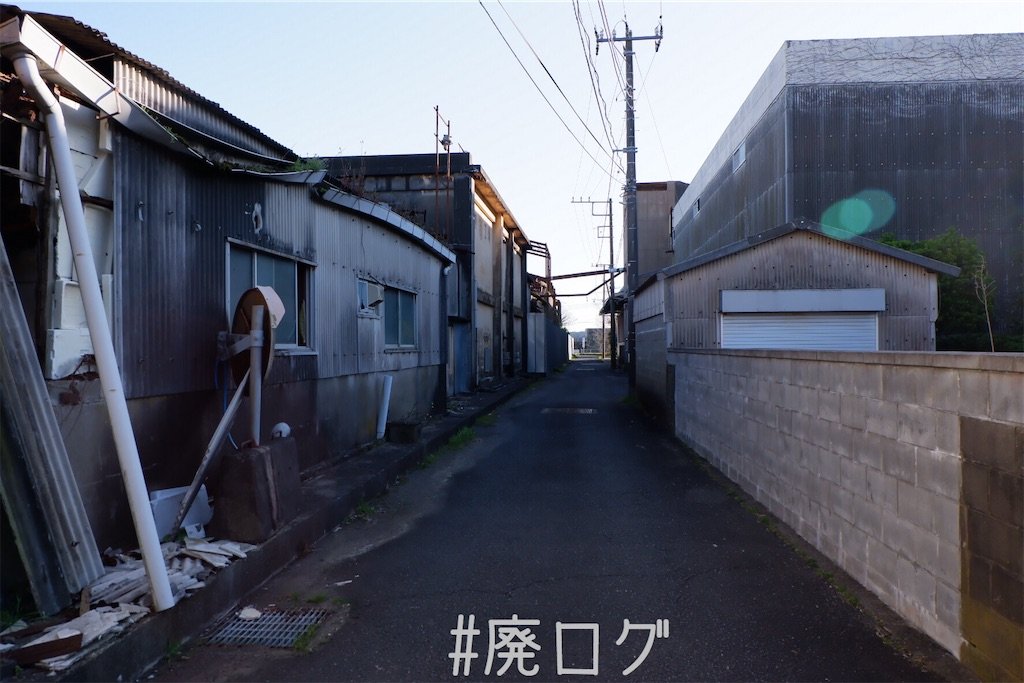f:id:hiyapa:20200418204652j:image