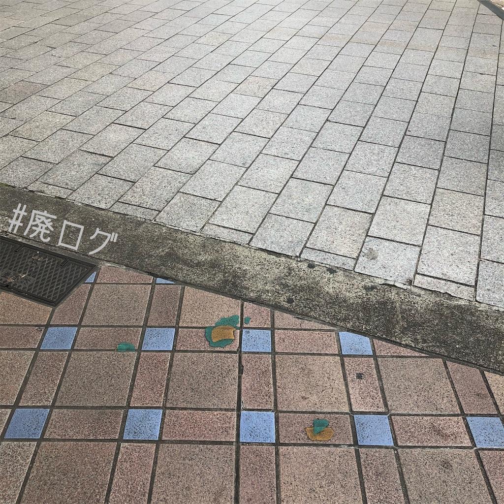 f:id:hiyapa:20200509152417j:image