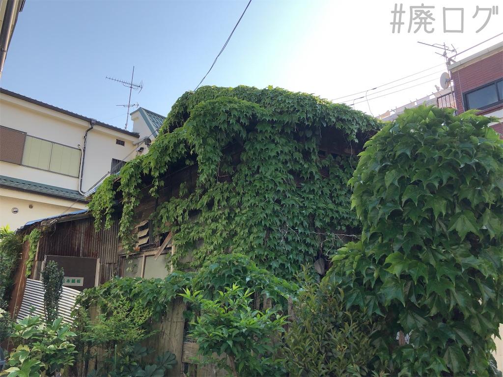 f:id:hiyapa:20200526194849j:image