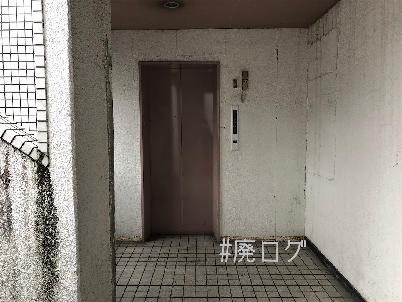 f:id:hiyapa:20210103220509j:image