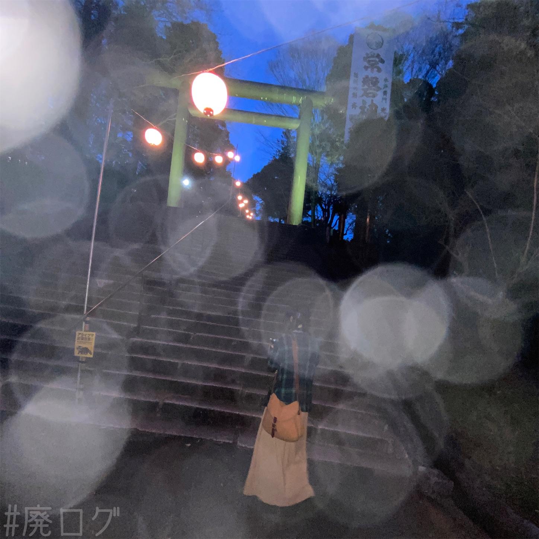 f:id:hiyapa:20210403222733j:image