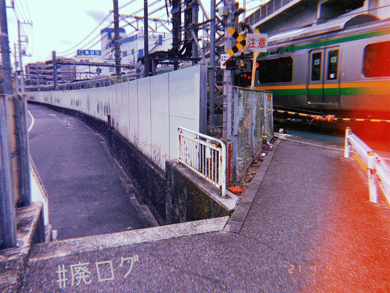 f:id:hiyapa:20210409081206j:image