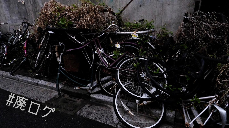 f:id:hiyapa:20210501201027j:image