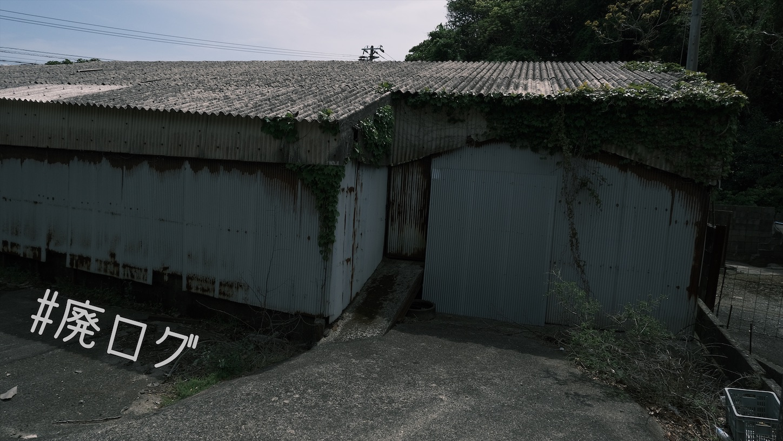 f:id:hiyapa:20210508005812j:image