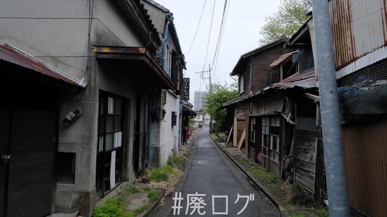 f:id:hiyapa:20210511082006j:image