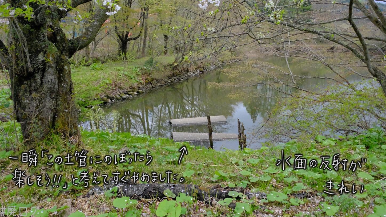 f:id:hiyapa:20210605232940j:image