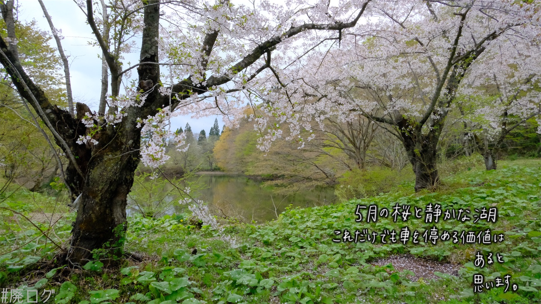f:id:hiyapa:20210605232959j:image