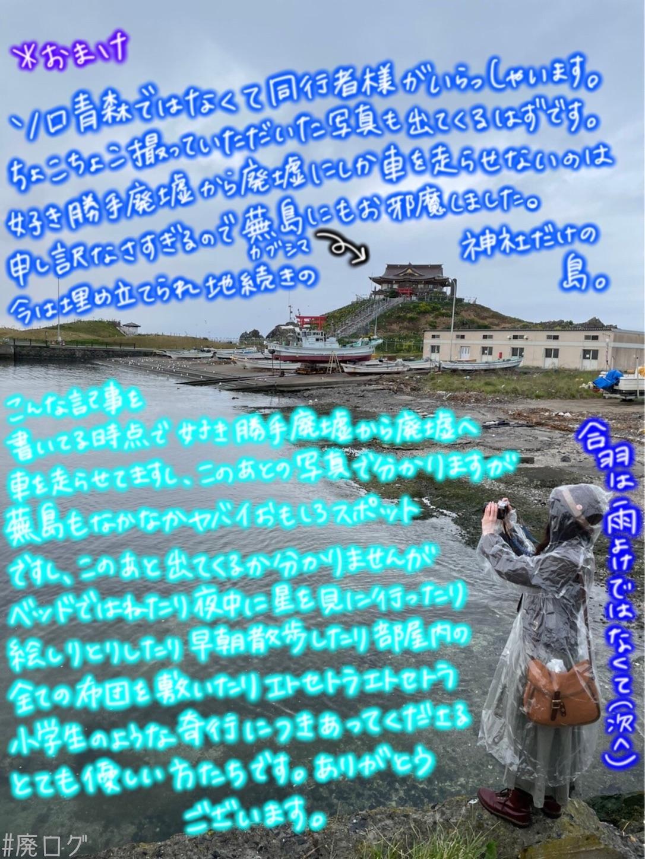 f:id:hiyapa:20210605235611j:image