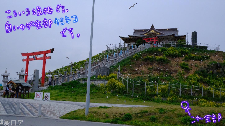 f:id:hiyapa:20210605235614j:image