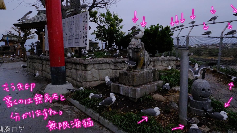 f:id:hiyapa:20210605235618j:image