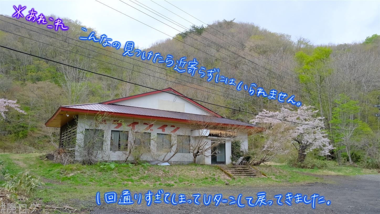 f:id:hiyapa:20210606002156j:image